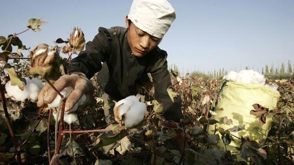 Boycotting Xinjiang cotton has become a human rights issue: Taiwanese legislative speaker